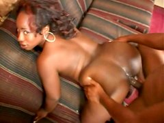 Plump assed Kelly Reigh getting her hole drilled